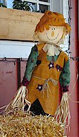 Rag Doll, Virginia City, Montana
