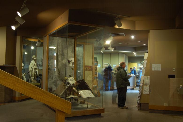 mammoth hot springs photos at yellowstone national park - go