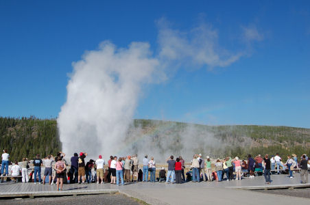 Old Faithful At Yellowstone National Park Go Northwest