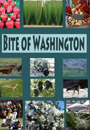 Bite of Washington