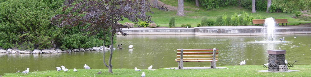 The duck pond at Manito Park