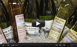 Mount Rainier Wine and Brew Festival Video